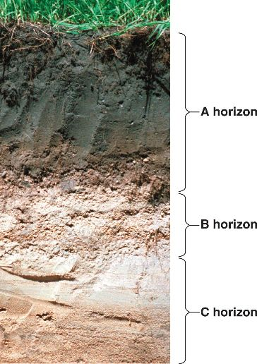 37 for Rocks and soil wikipedia
