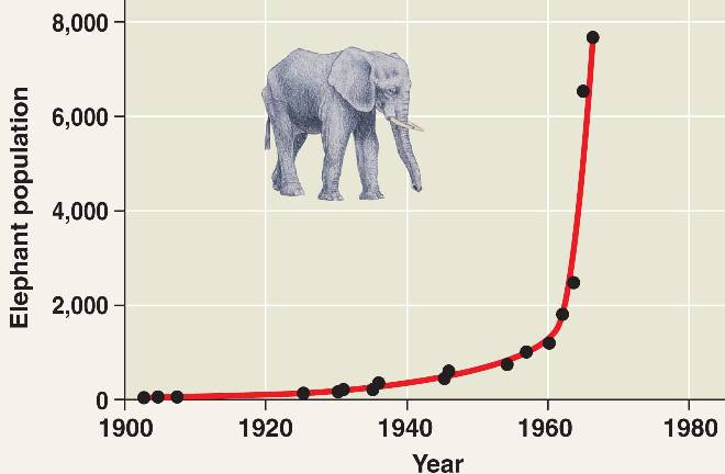 exponential population growth A page of resources to help you to understand what has happened to population growth around the globe.